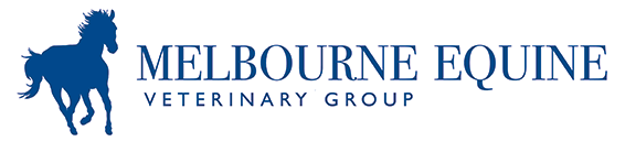 Melbourne Equine Veterinary Group